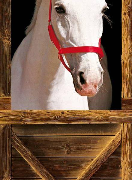 Deurposter Wit Paard