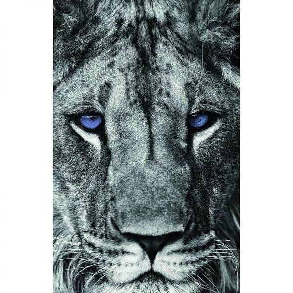 Strandlaken Animal Pictures Lion