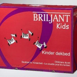 Kinder Dekbed 4-seizoenen Microvezel 6D 100x135cm